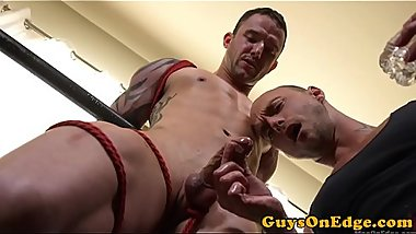 Edging dom sucking studs dick